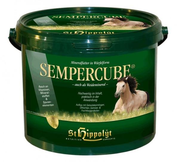 Semper Cube