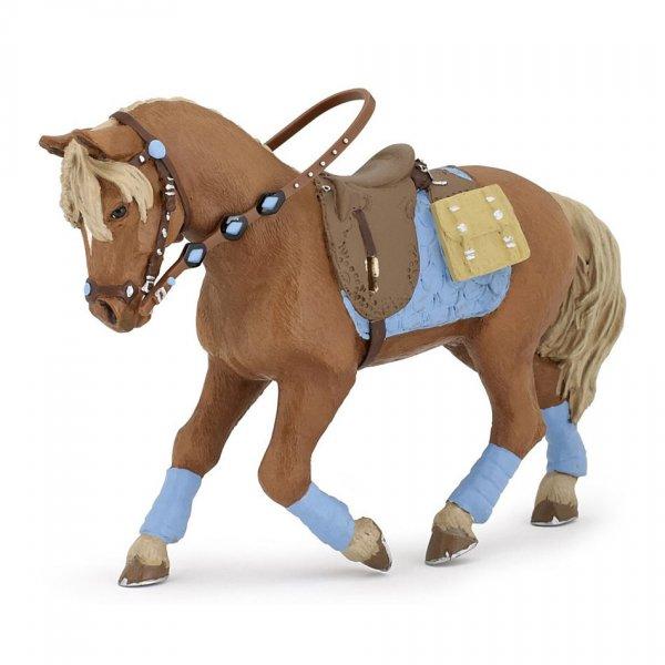 Pferd des jungen Reiters