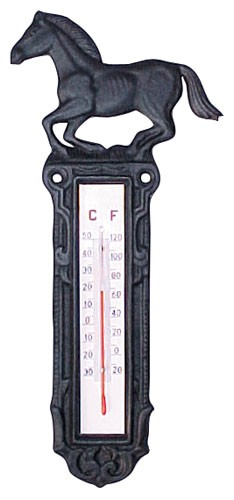 Thermometer Gusseisen